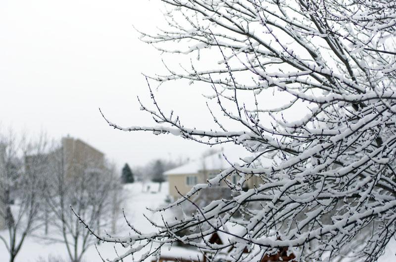 2015_winter_04