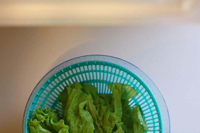 r_lettuce_04